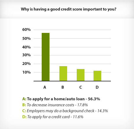 Why is having a good credit score important to you?-Survey'