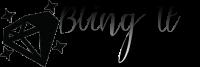 BlingItBridal.com Logo