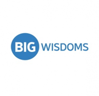 Bigwisdoms Logo