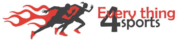 Everything4Sports.com Logo