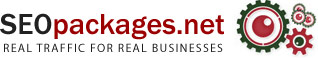 Logo for SEOPackages.net'