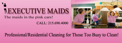 Company Logo For Executive Maids'