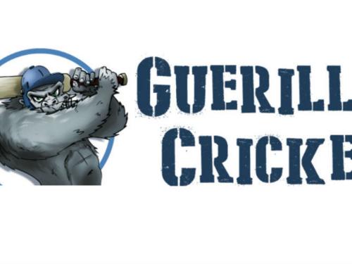 Guerilla Cricket'