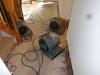 Newtown Basement Water Damage Repair'