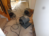 Doylestown Basement Flood Cleanup and Repairs