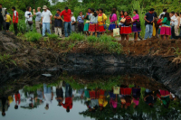 STOP ECOCIDE IN THE AMAZON