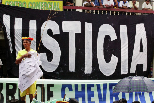 STOP ECOCIDE IN THE AMAZON'