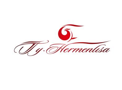 Company Logo For tyhermenlisa hair'