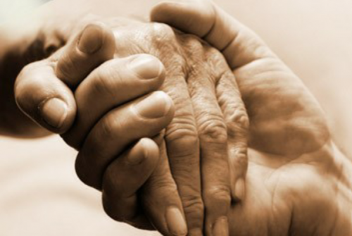 Give a hand to seniors.'