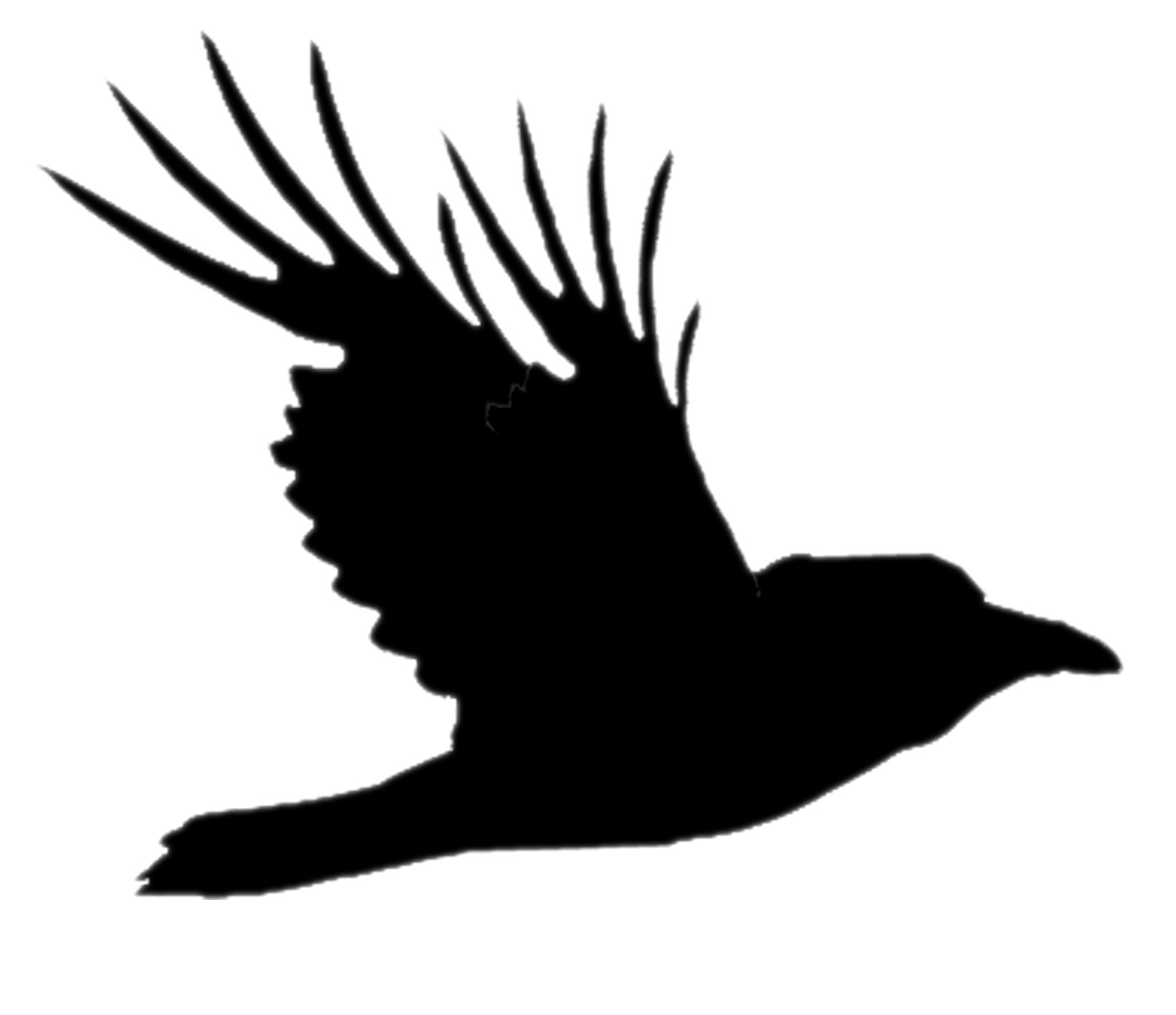 Raven Firm, LC Logo
