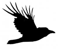 Raven Firm, LC Logo