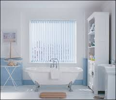 bathroom blinds'