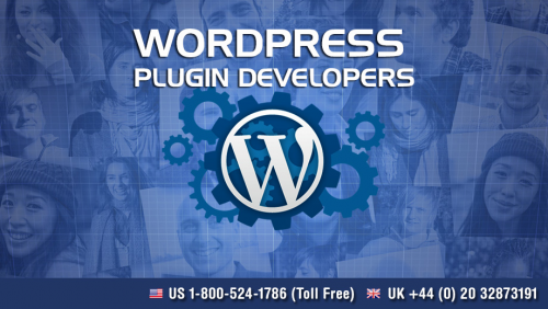 Company Logo For Plugin Developers India'