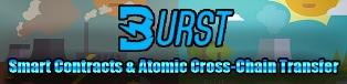 BurstCoin'