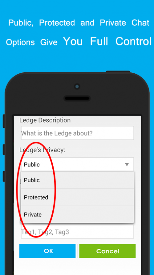 LocalLedge App'