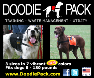 utility dog backpack'
