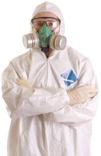 Clear Asbestos Removal