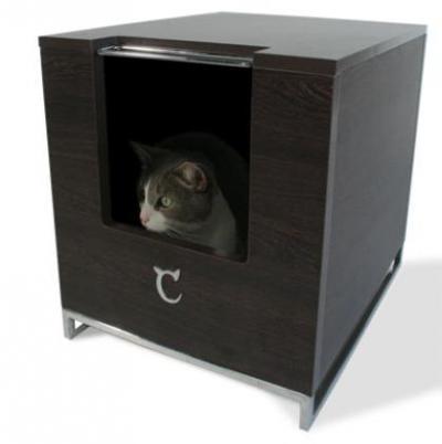 Modern Cat Designs'