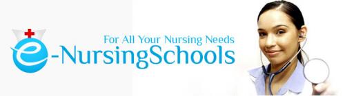 e-nursing schools'