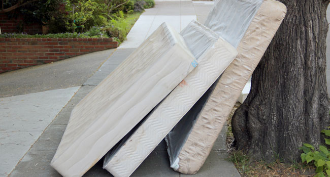 Sleep Junkie Explains How Mattress Recycling Helps Planet