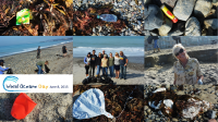 Hoffman Fabrics World Oceans Day Capistrano Beach Cleanup