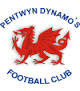 Pentwyn Dynamos Football Club