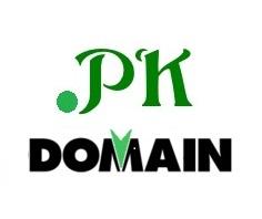 Company Logo For Pk Domain'