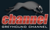 Greyhound Channel Logo