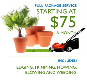 Truly Green Landscaping: Providing Professional Lawn Care An'