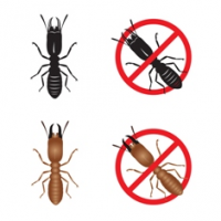 StopPestInfo.com Offering Independent Pest Control Reviews a