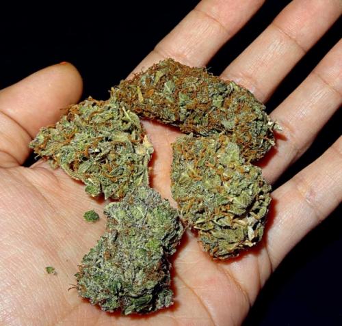 Best 420 Grinder'