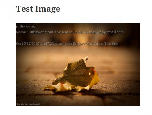 Dynamic Watermark on Wordpress Image'