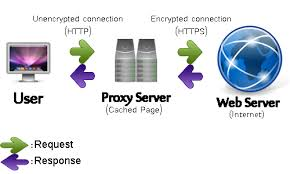 dedicated private proxies'