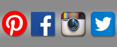 The Social Media Darlings'