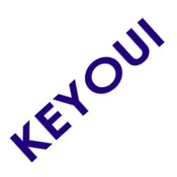 Company Logo For Keyoui'