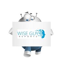 WiseGuyReports Logo